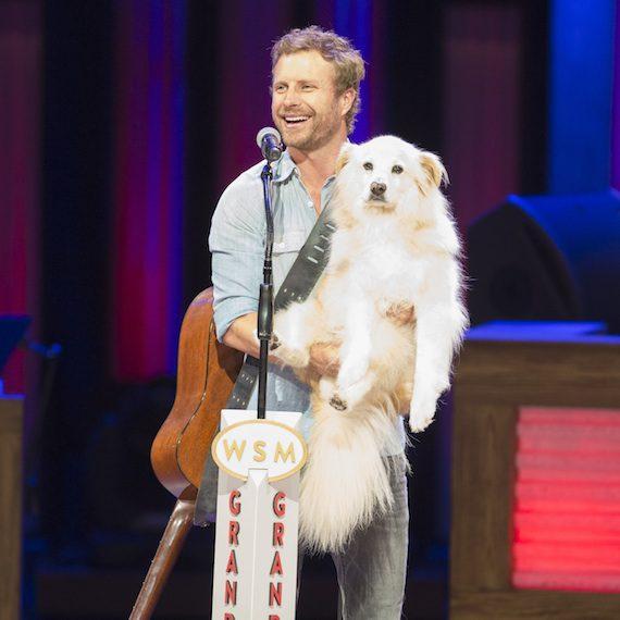 Dierks Bentley Mourns His Dog Jake Musicrow Nashville