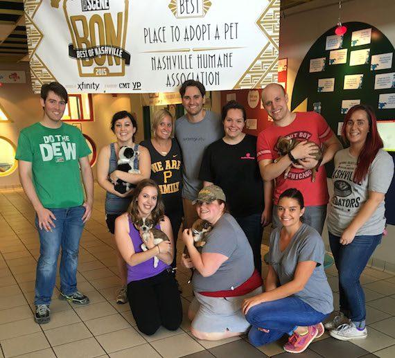 Sony/ATV staffers volunteer at the Nashville Humane Association